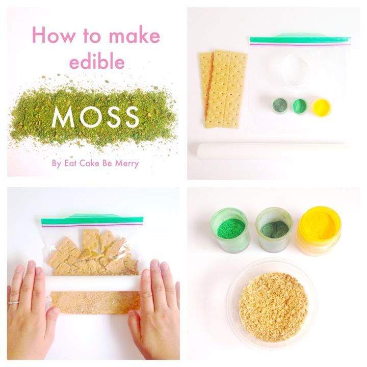 Edible Moss Cake Decoration : 37 best Dessert table images on Pinterest