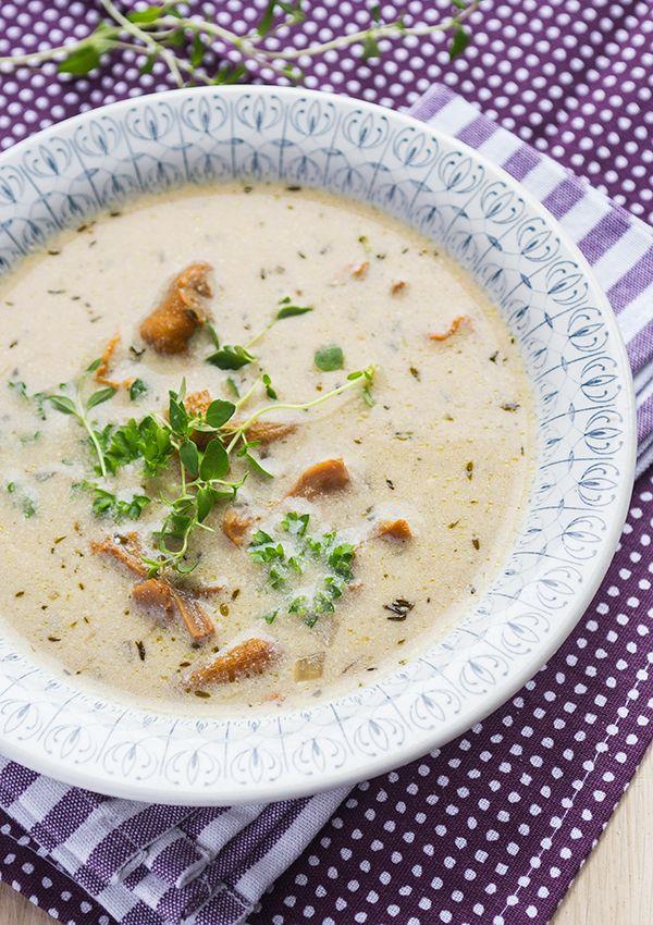 Chantarelle soup. (Kantarellsoppa.)