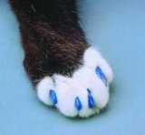 Soft Claws Nail Caps for cats - Cats claws need attention too.  If they are an indoor cat, this looks like a great solution.  And they have lots of great colors!