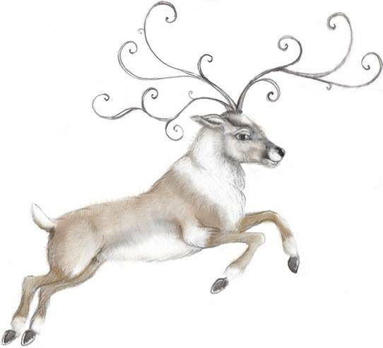 Renna/reindeer Illustration Christmas