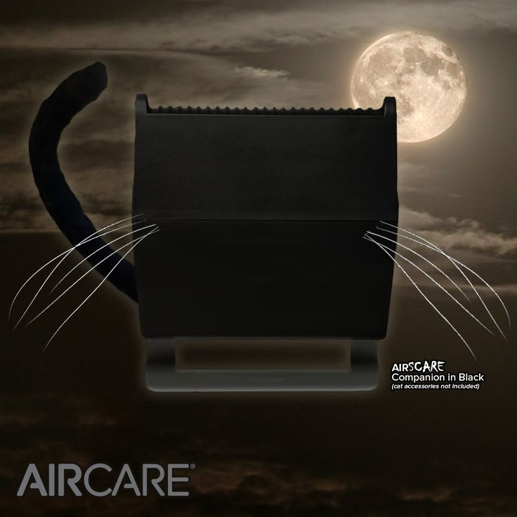 The dry winter air can be a CATastrophe for your skin and hair. Our Companion humidifier can help fight off static cling, static shock, and dry skin by keeping the humidity level in your home perfect. #AIRCARE #humidifier #dryskin #allergies