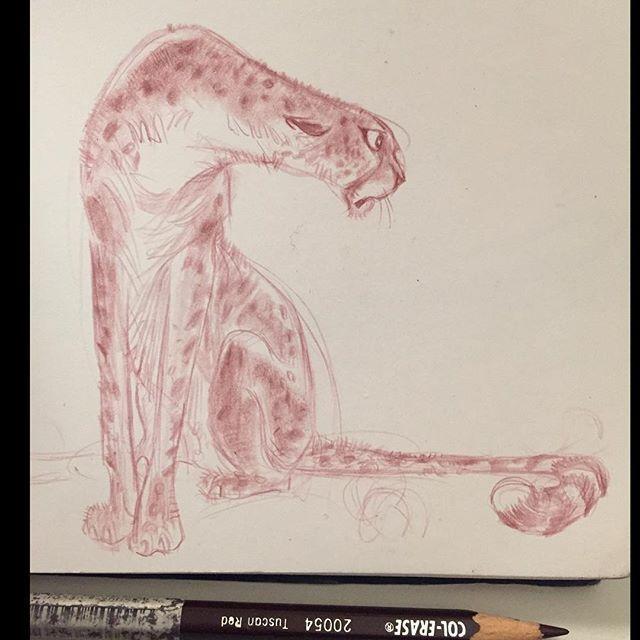 The Art Of Character Design With David Colman Download : Melhores imagens de creature design big cats no