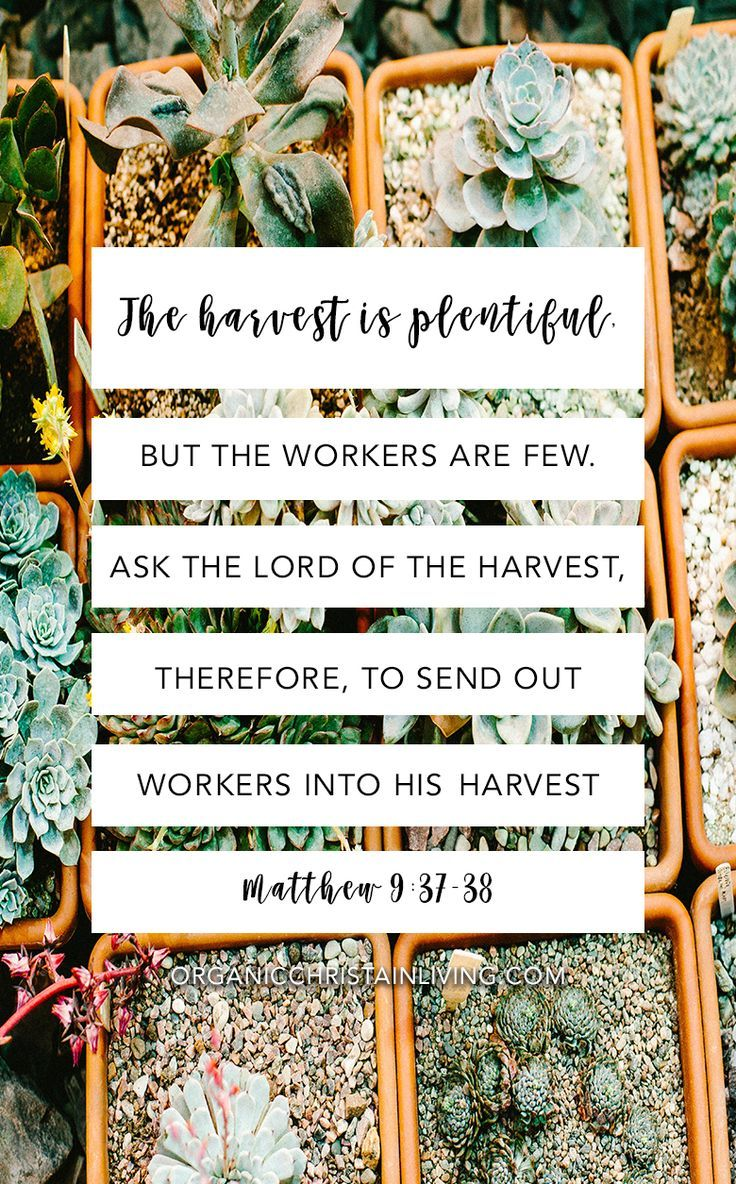 25  best ideas about easter bible verses on pinterest