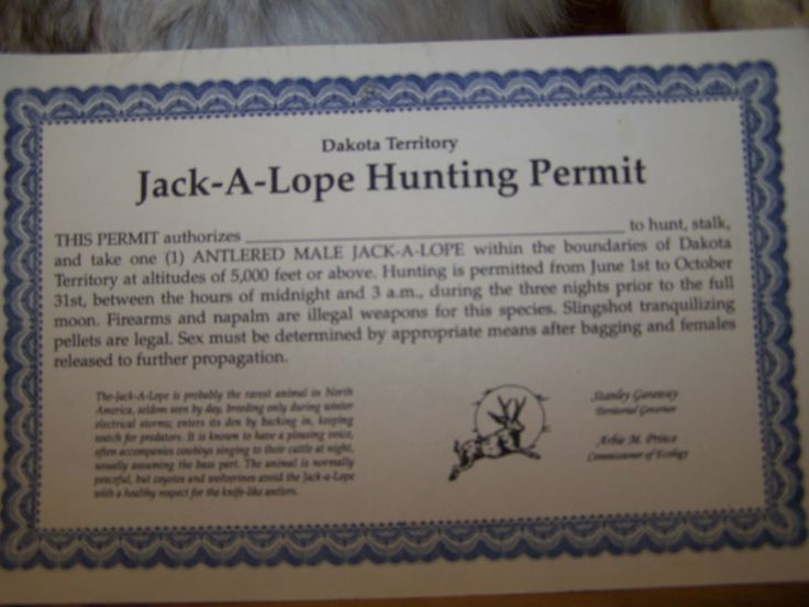 1000 images about western jackalope on pinterest for Mt fishing license