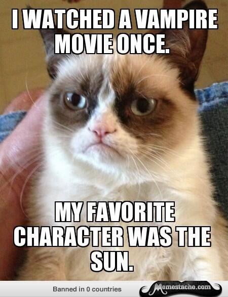the sunnnnnnnnnnnnnnnnnnnnnnnnnnnnnnnnnnnnnnnnnnnnnnnnnnnnnnnnnnnnnnnnnnnnnsunsunsunthesunnnnnnnnnnnnnnnnnnnnnnnnnnnnnn Yas grumpy cat