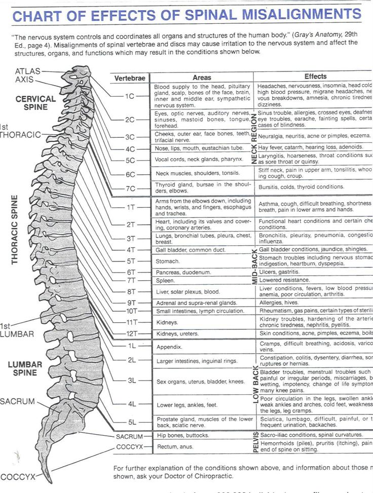 chart of effects of spinal misalignment Healing Energy