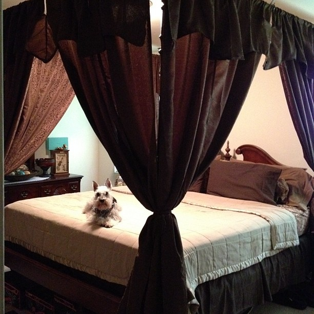Made A Canopy Bed Out Of Curtain Rods Mounted To The