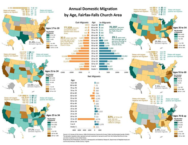 7 best fairfax county infographics images on pinterest fairfax annual domestic migration by age fairfax falls church area annual domestic migration by age fandeluxe Images
