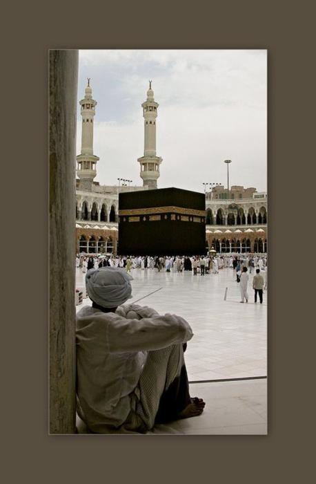 """ """"Envole-toi vers le Vrai avec les ailes du Qur'ân et de la Sunna; entre chez Lui en mettant ta main dans celle du Prophète (Salla Allâhu 3alayhi wa assalâm) ; fais de celui-ci ton ministre et ton..."""