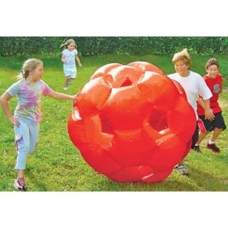 like a giant hamster ball you get inside  holds up to 200 lbs, its pretty awesome