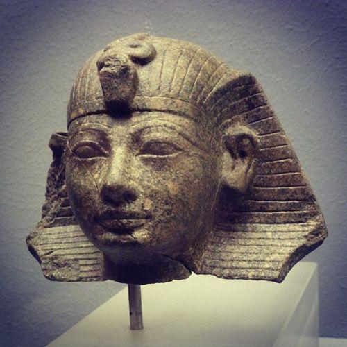 https://flic.kr/p/dHJq5x | Amenhotep II | Kopf eines Sphinx Amenophis' II.  Aufgrund der Bruchkanten kann dieser Kopf einem Sphinx, der Darstellung des Königs als Löwe mit Menschenkopf, zugewiesen werden. Carakteristisch für Amenophis II. Sind die jugendlich-idealisierenden Gesichtszüge.  Granodiorit  Neues Reich 18. Dynastie, um 1425 v,Chr.  ÄS 500  ***  Head of a sphinx of Amenhotep II  On the basis of the broken edges this can be identified as the head of a sphinx, the representation of…