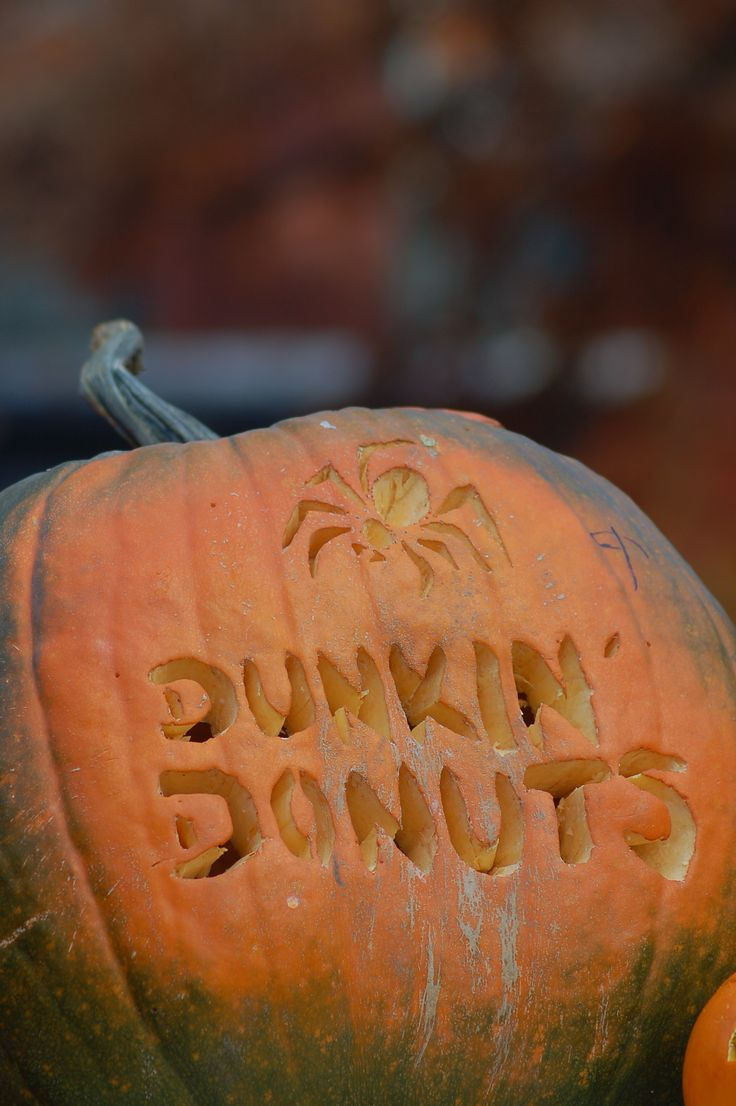 Best images about pumpkin carving ideas in pictures on