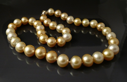 Blended Golden South Sea Pearls