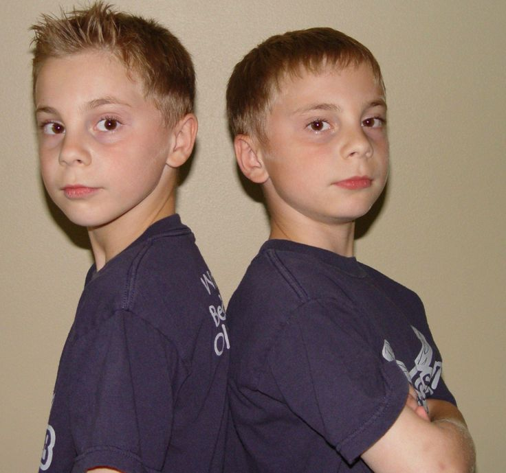 Facts about fraternal twins