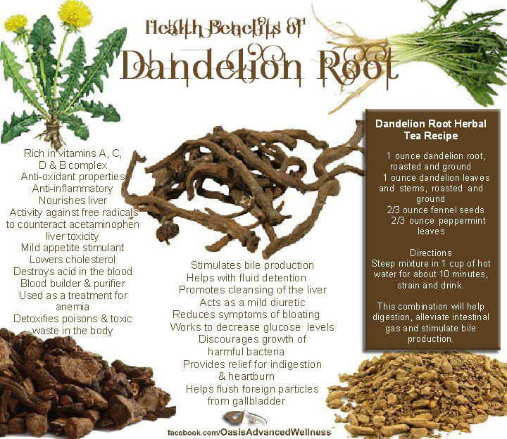 Dandelion Root Benefits (Taraxacum officinale) These are true (except I have not found confirmation about blood pressure, which depends largely on the cause of it, to determine what helps anyway. What helps with one cause may not help with another.) Tea, though, is part of the help. Cook it like boiling carrots but change the water once. Eat the whole herb, leaves& flowers too, cutting it off as deep as a knife will go. Beware of herbicides and pesticides. Get rid of flower stem - bitter.