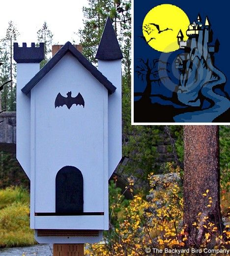17 best images about diy bat house on pinterest gardens for How to make a bat house