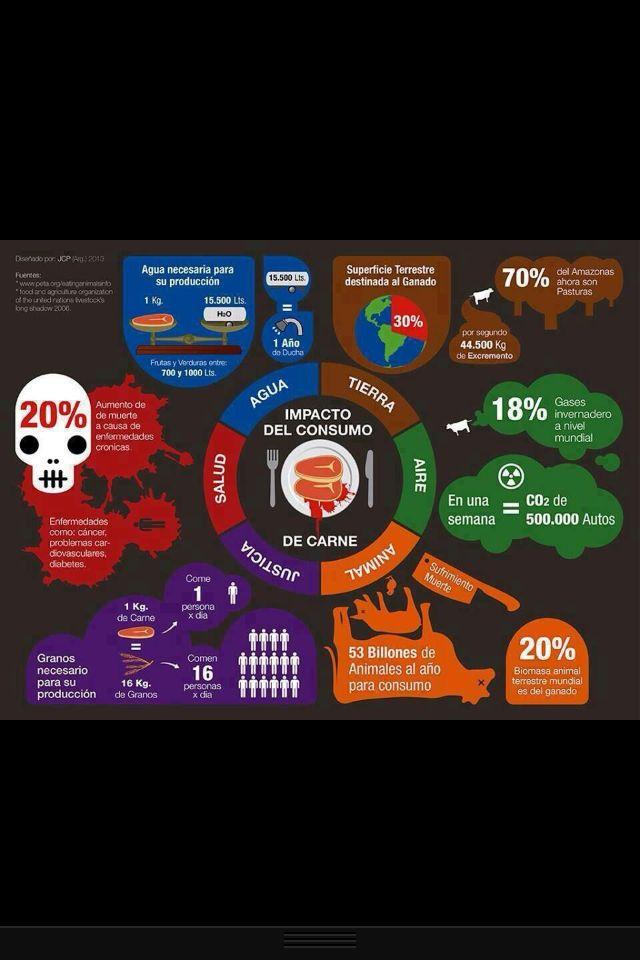 Impacto del consumo de carne en el planeta
