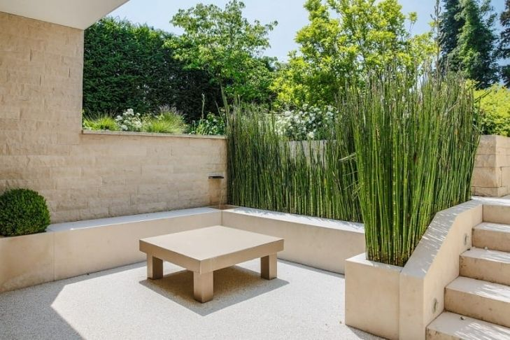 Pflanzen Sichtschutz Terrasse Kübel Beautiful Sichtschutz