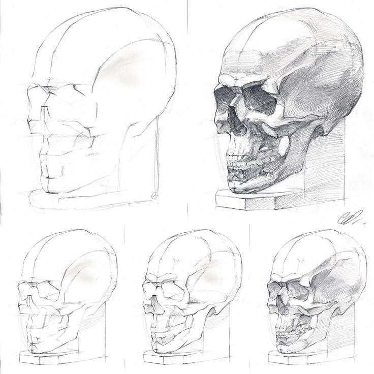 дома рисуем картинки карандашом поэтапно череп расскажем все тонкости