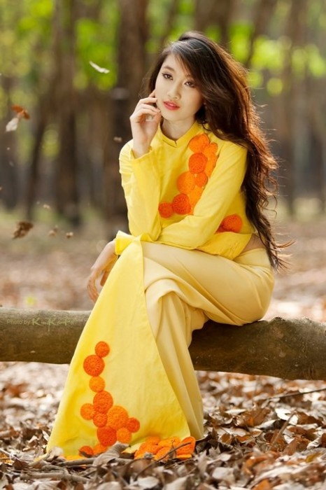 Fall Leaves. Ao dai (Vietnamese traditional dress)