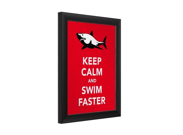 Keep calm and swim faster with great white shark poster.  #greatwhite #shark #keepcalm #swimming #poster