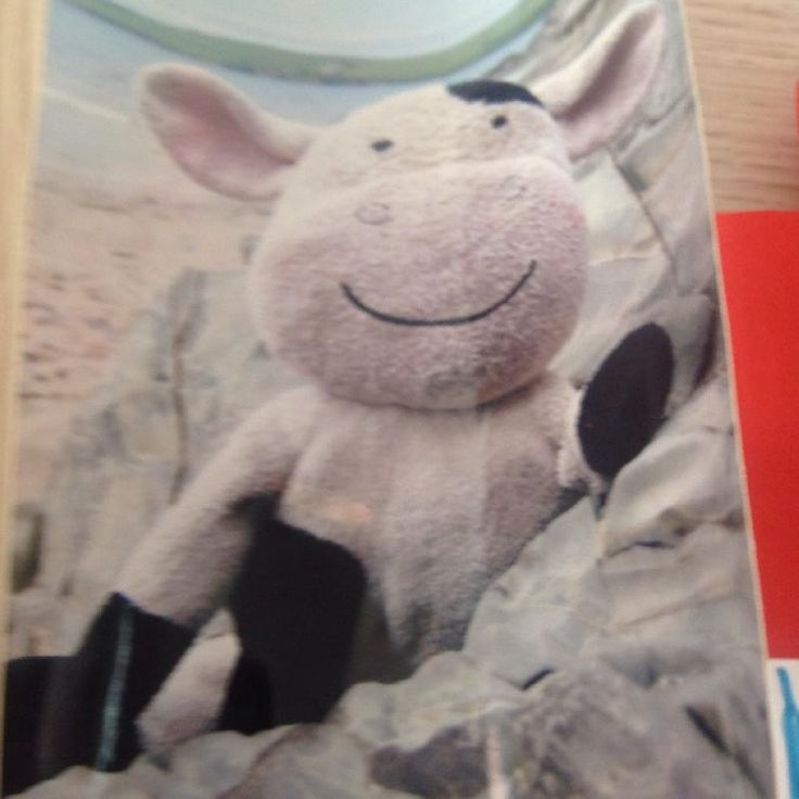 """Lost on 05 Mar. 2016 @ Birmingham new street, virgin train. My daughter left mr cow, a black and white 8"""" beanie on the 6-50pm virgin train from Birmingham new street to Euston on 5th March. She has had him since she was born 8 years ago, and he is much mis... Visit: https://whiteboomerang.com/lostteddy/msg/1w99st (Posted by Rebecca on 08 Mar. 2016)"""