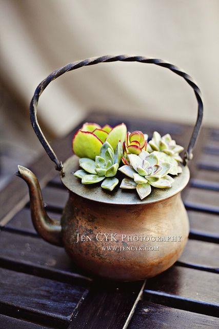 Tutorial: Succulent Planters