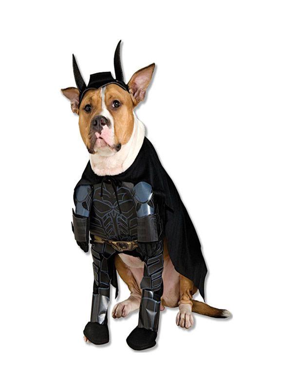 Quereis Comprar Un Disfraz De Batman Tdk Para Perro Barato En