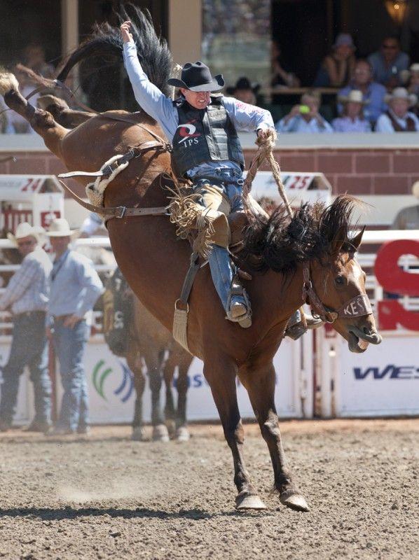 273 Best Bareback And Saddle Bronc Images On Pinterest