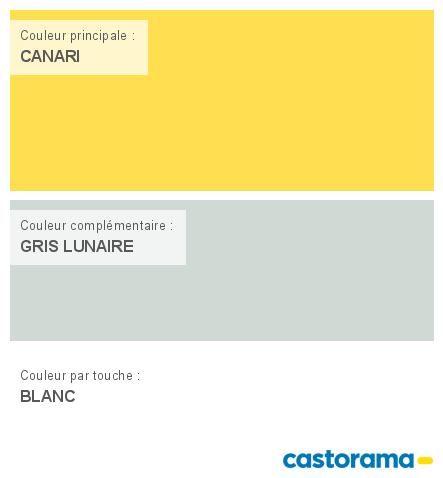 Castorama Nuancier Peinture - Mon harmonie Peinture CANARI satin de COLOURS Classic en 2019 ...