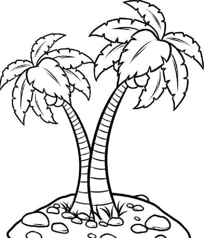 Palm Tree Coloring Pages Tree Coloring Page Leaf Coloring Page