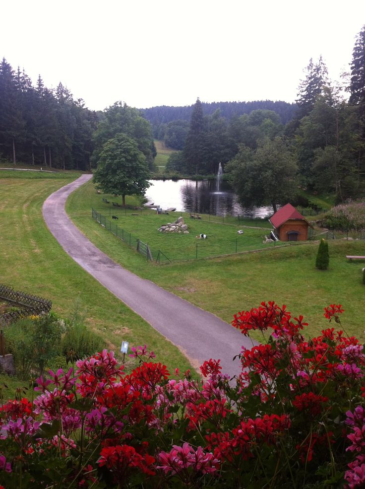 Landhaus Lauble in Hornberg, Black Forest, Germany. A charming hotel in the middle of the Black Forest, surroundec by pure nature: pine most highs,  a natural lake, home - cooked meals. Tip: you must test out the typical white wine, the Riesling