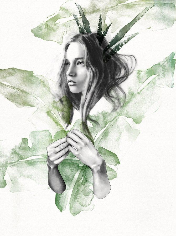 vegetal01
