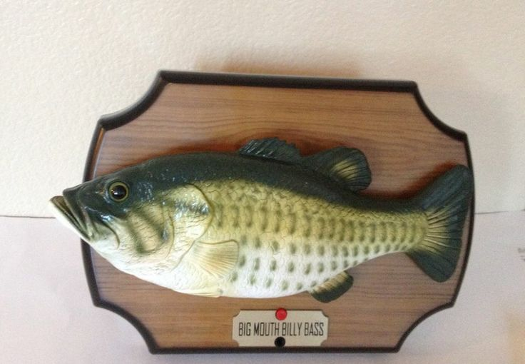 1000 ideas about singing fish on pinterest about time for Talking bass fish