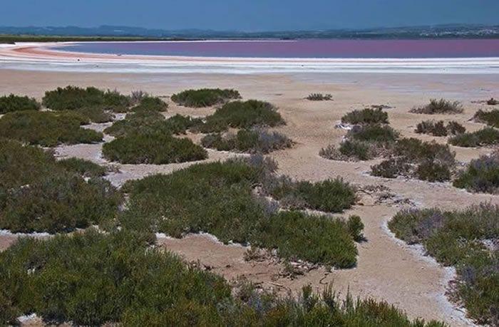 El Parque Natural Lagunas de la Mata-Torrevieja, se encuentra en la comarca de la Vega Baja del Segura (Alicante), en los municipios de Guardamar del Segura, Torrevieja y una pequeña parte de Rojales y Los Montesinos.