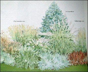 Ornamental Grass Garden Plan 27 best austin gardening grasses perennials images on pinterest ornamental grass bed design google search workwithnaturefo