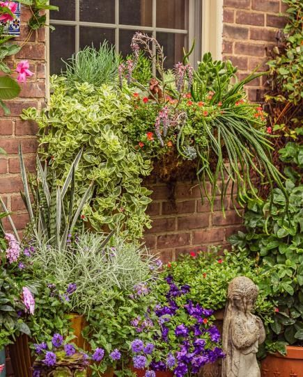 310 Best Container Gardens Images On Pinterest