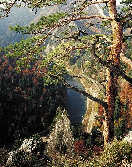 Pieniny Mountains in Poland. The most famous peak, Trzy Korony (Three Crowns), is 982 metres high.