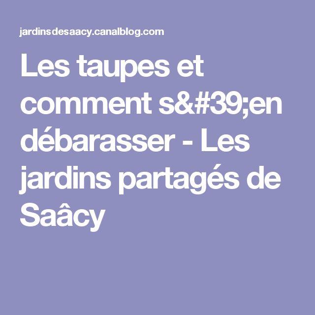 Les taupes et comment s'en débarasser - Les jardins partagés de Saâcy