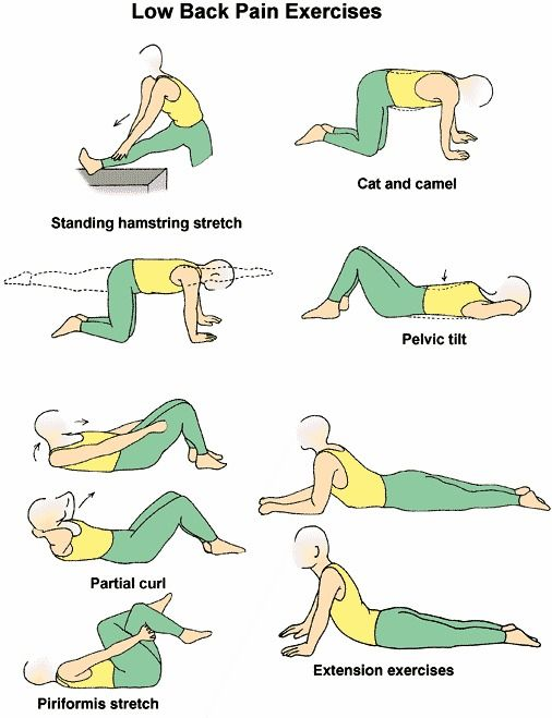 excercises for your back | While I have described two lower back exercises above, you will only ...