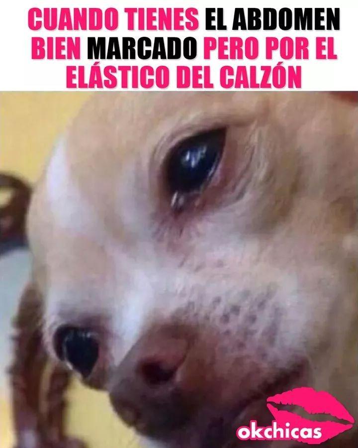 Pin De Camila Florencia En Memes E Imagenes Divertidas Memes Divertidos Fotos De Risa Chiste Meme