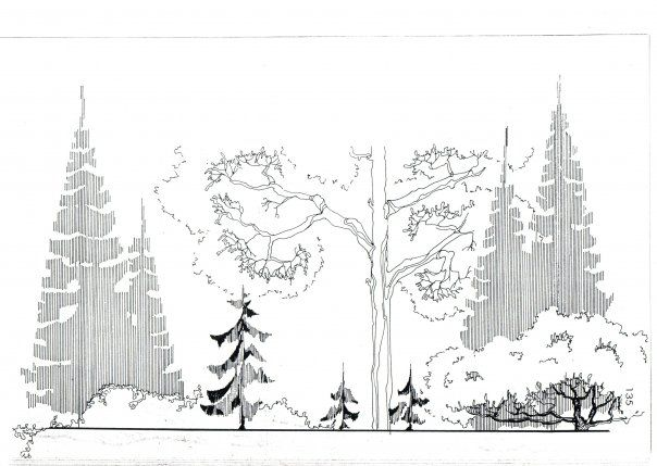 Best Images On Pinterest Architecture Drawing Trees And