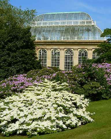 Royal Botanic Garden~  Edinburgh, Scotland. #botanical_gardens. Re-pinned by #Europass