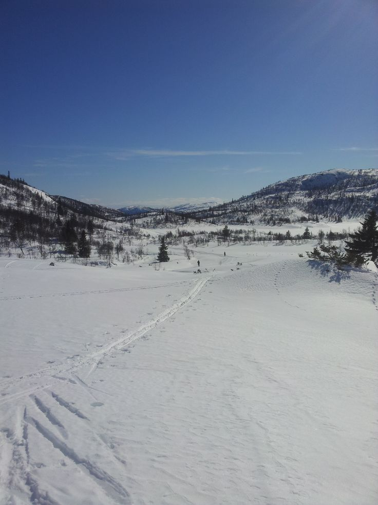 Cross-country ski into our Fagerdalen (hunting cabin) property!