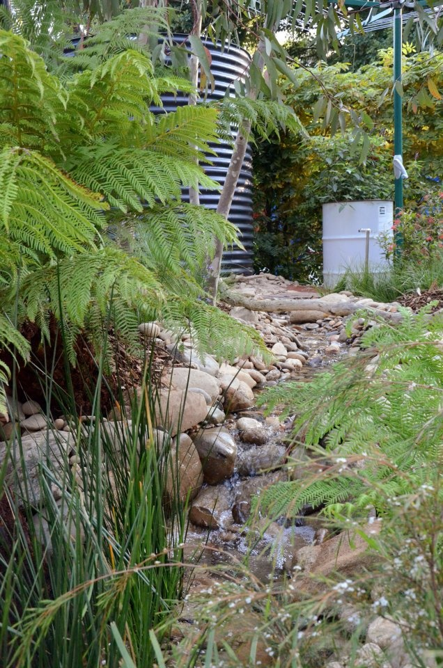 From facebook page: The Garden Gurus - Equilibrium by Phillip Johnson Landscapes & Savewater