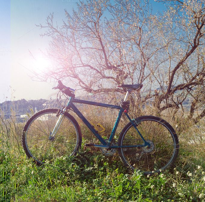 Bicycle in the Park by JCB Photogr@phic on Creative Market