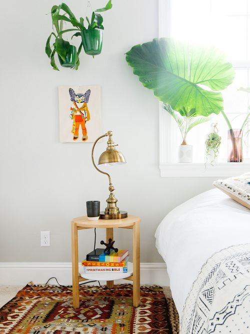 BACK TO COLLEGE WITH SWENYO — OLD BRAND NEW | lamp, colors, plants, Alocasia