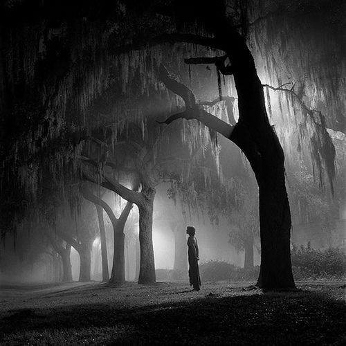Eerie and beautiful...