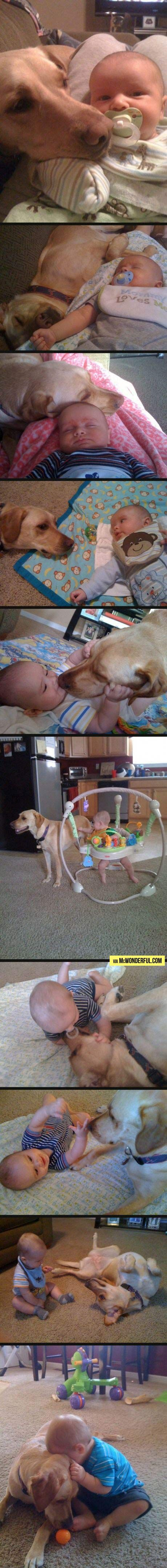 """Best friends for 2 years As I scrolled through this I just kept thinking """"that dog better not die at the end!"""""""