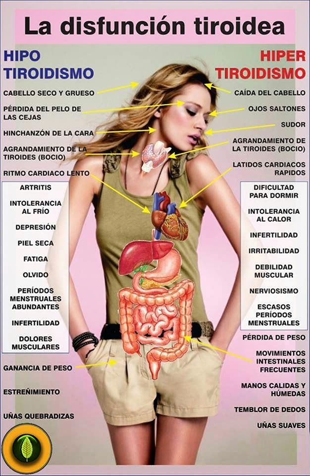 TU SALUD: Hipertiroidismo, hipotiroidismo y la importancia d...